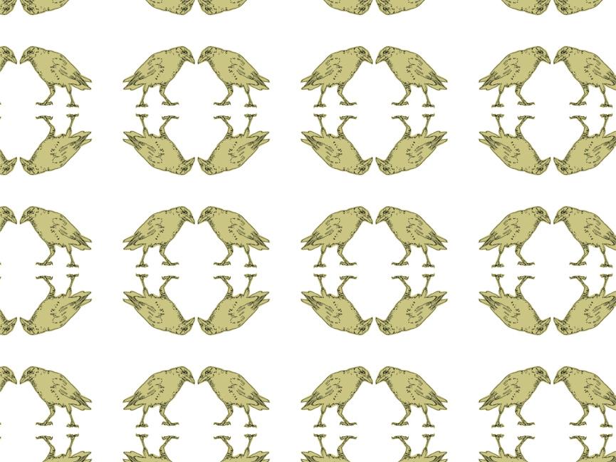 fuglemønster
